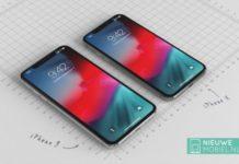 iPhone LCD da 6.1 pollici