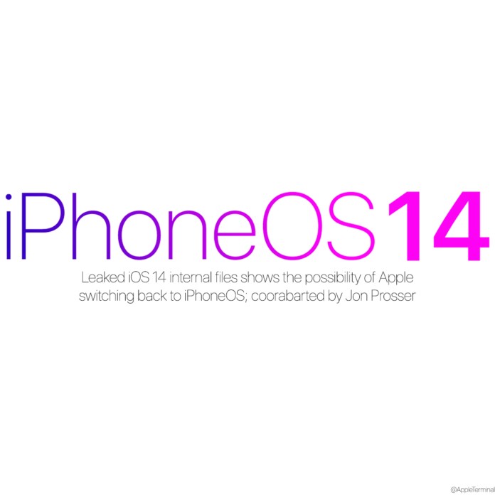 iPhoneOS14